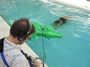 Stephen Yassi underwater